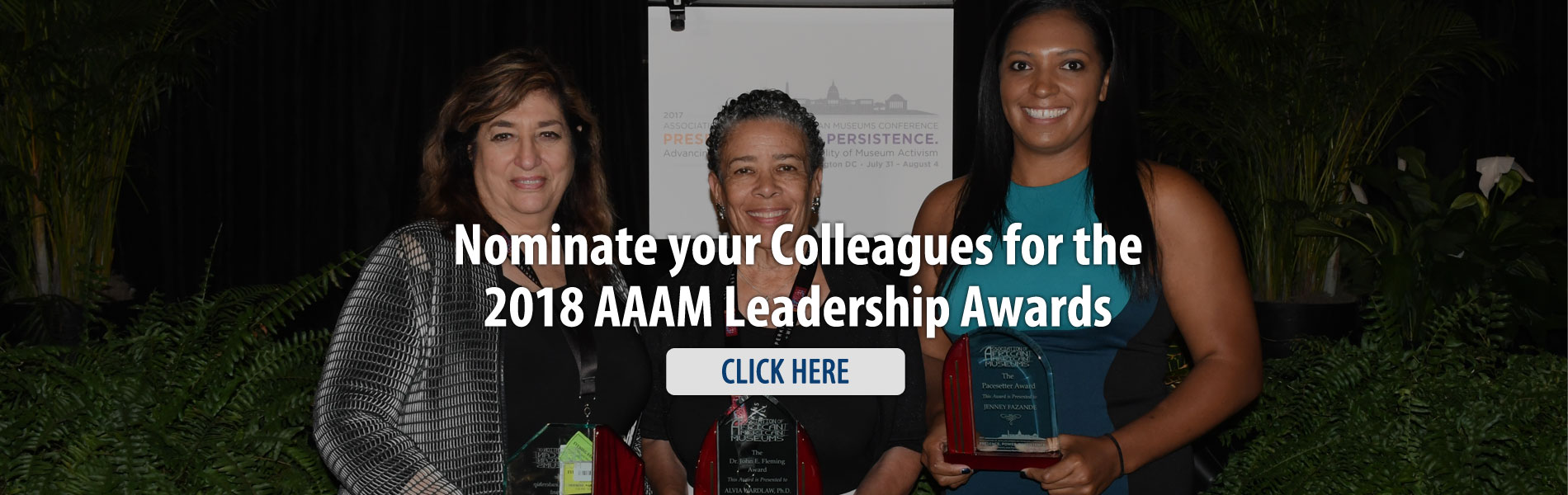 Association of African American Museums awards