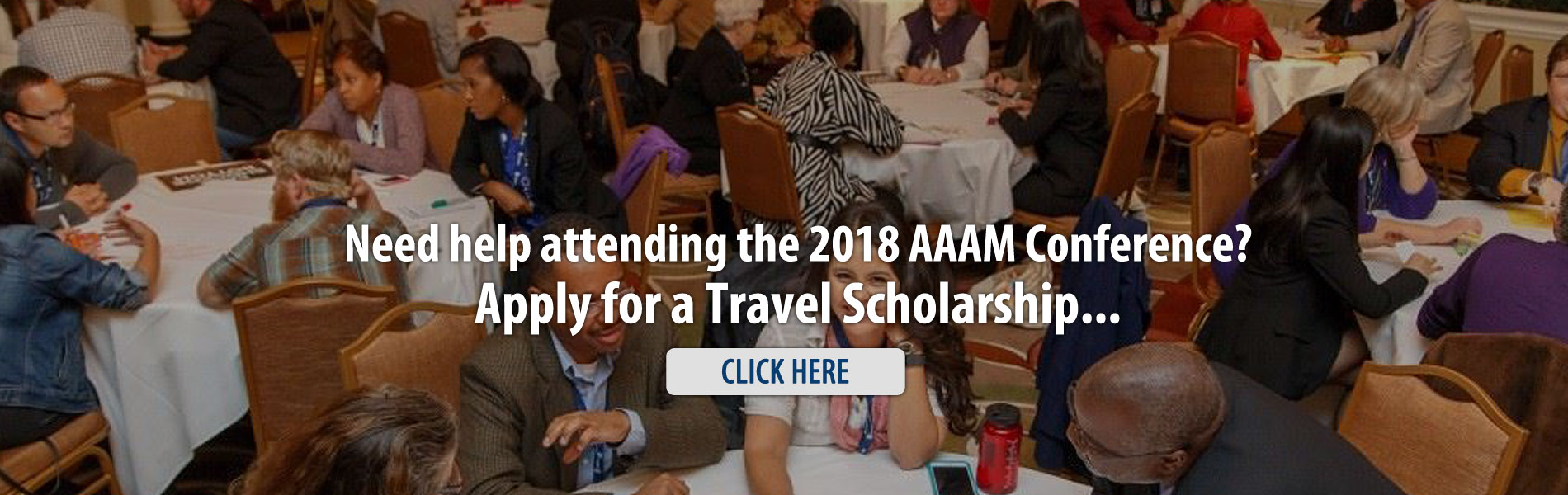 Association of African American Museums travel scholarship