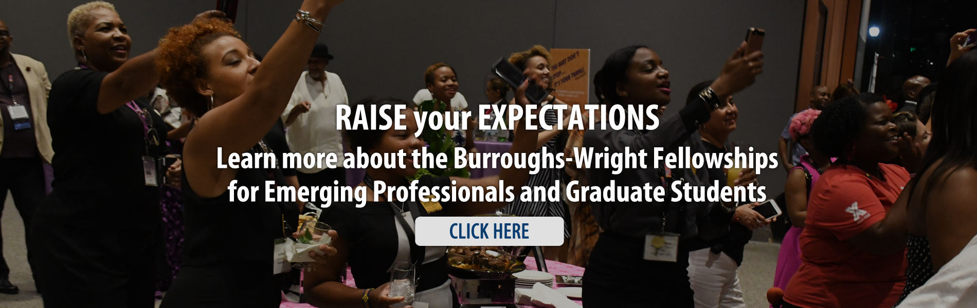 Margaret T. G. Burroughs and Charles H. Wright Fellowship