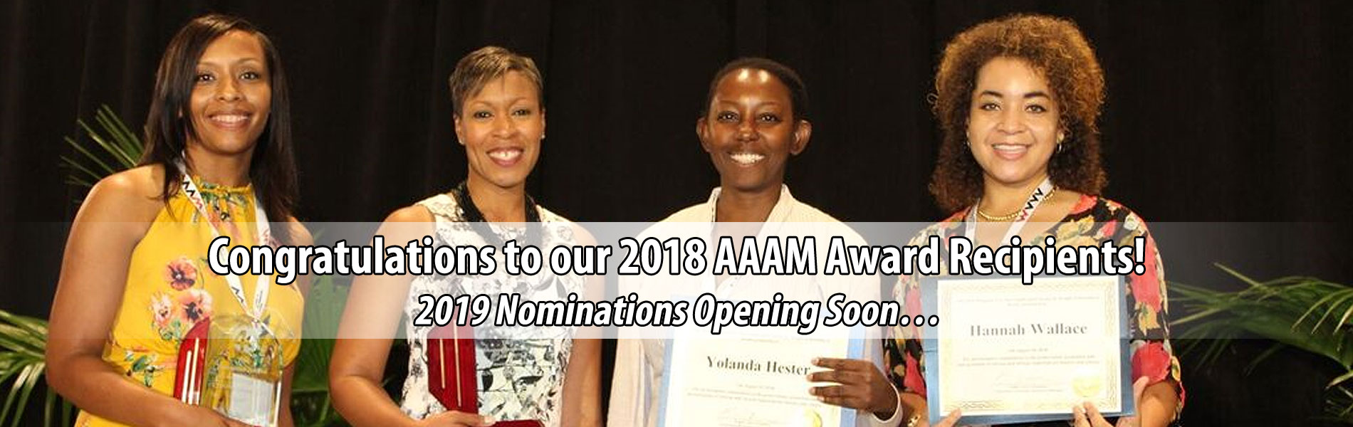 Association of African American Museums award winners