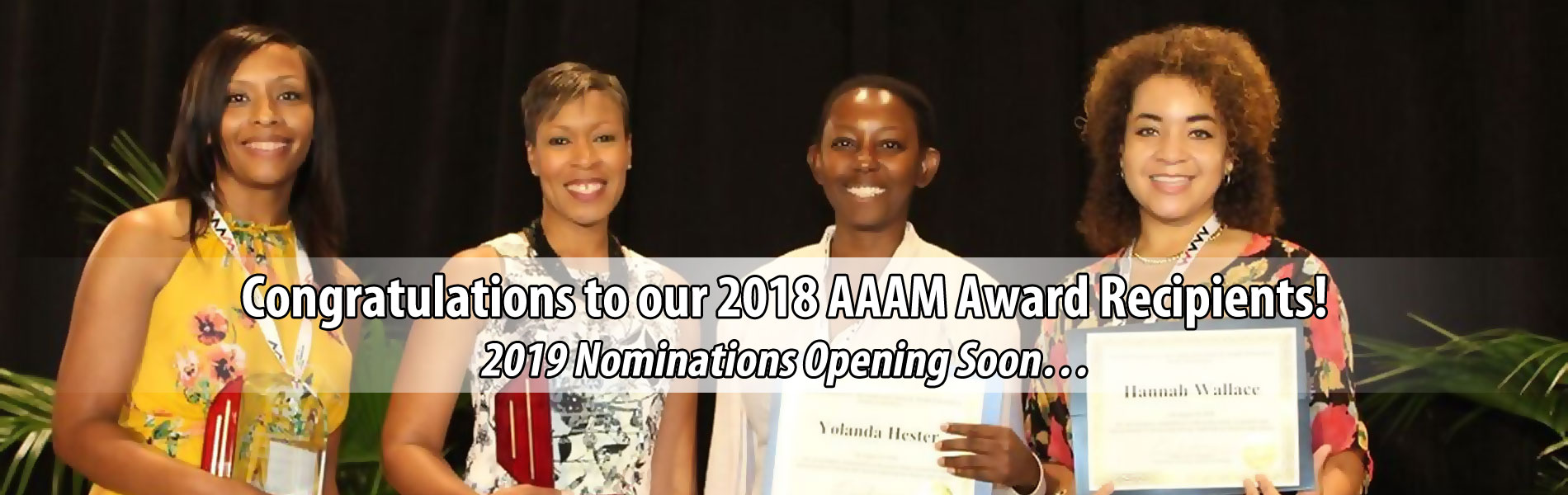Association of African American Museums award winners